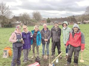 Marlow's Seymour Park to blossom with fruit trees