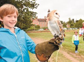 Bugs, birds and 'beasts' on display at Ascot wildlife event